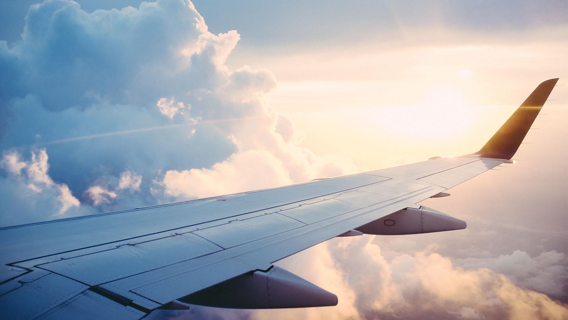 Plane wing 3
